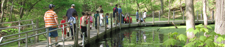 a group of children and adults, seen from behind as they walk across Black Pond's bridge