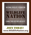 Wildlife Nation